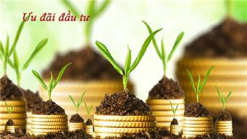 Bổ sung thêm nhiều ngành, nghề ưu đãi đầu tư từ 2021