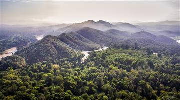 Công bố hiện trạng rừng toàn quốc năm 2020