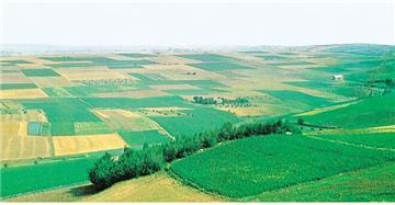 Hồ sơ, thủ tục chuyển đất trồng hoa màu sang đất thổ cư