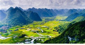 Thủ tục chuyển đổi đất trồng lúa sang đất trồng cây hàng năm