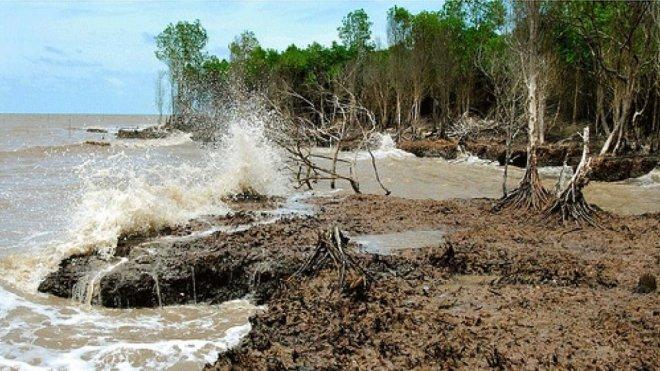 8 tỉnh đồng bằng sông Cửu Long được hỗ trợ chống xâm nhập mặn