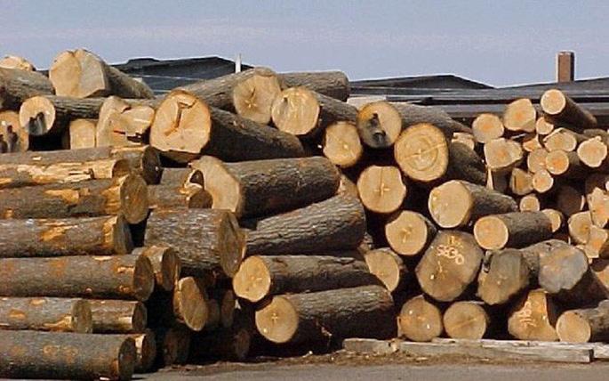 thủ tục xuất nhập khẩu gỗ