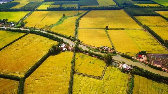 Điều kiện và thủ tục chuyển đổi đất nông nghiệp sang đất thổ cư 1724591266
