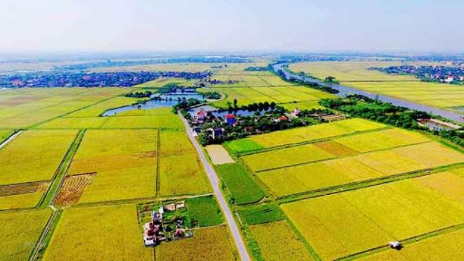 thông tin phải biết khi xây nhà trên đất nông nghiệp