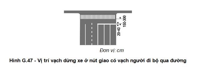 vạch dừng xe ở nút giao có vạch người đi bộ qua đường