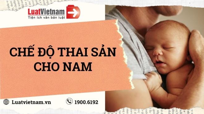 che do thai san cho nam